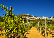 Umbrien - Assisi - Perugia